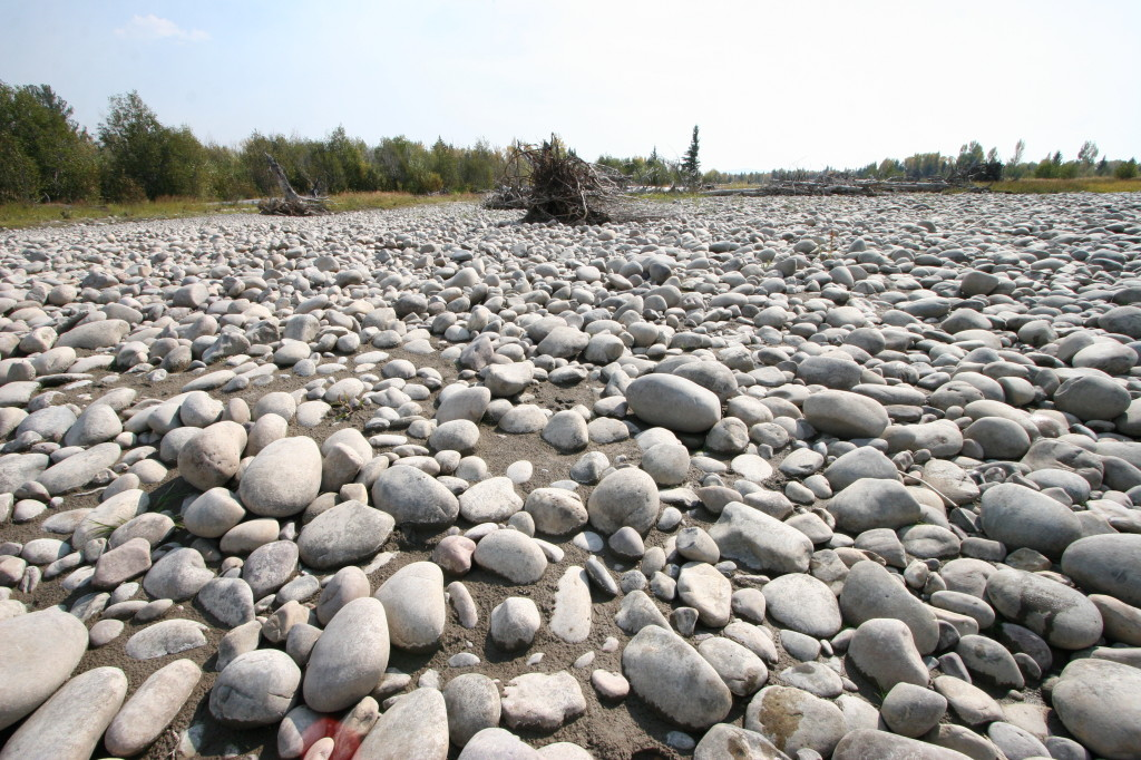Dry beds abandoned by the river as it unpredictably changes course from year to year.