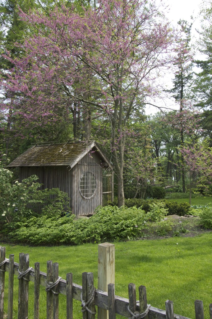 Asian Gardens at the Fabyan Forest Preserve and Villa.