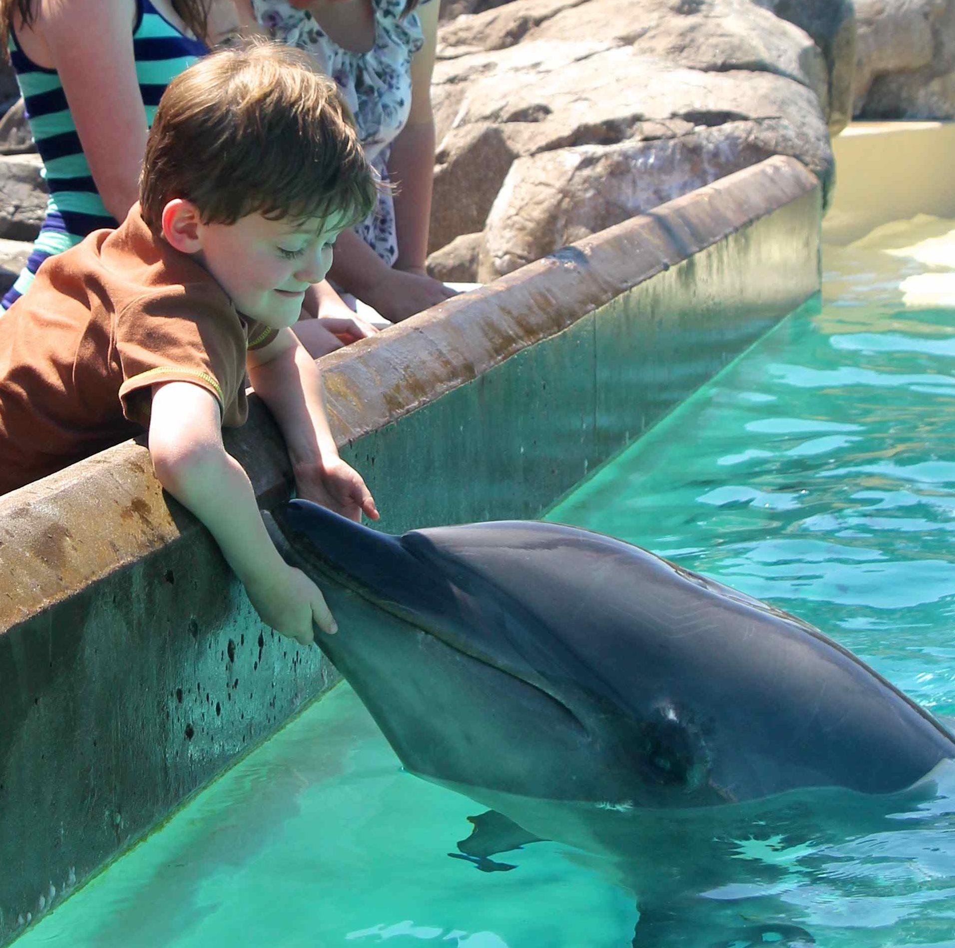 Making a friend at Sea World