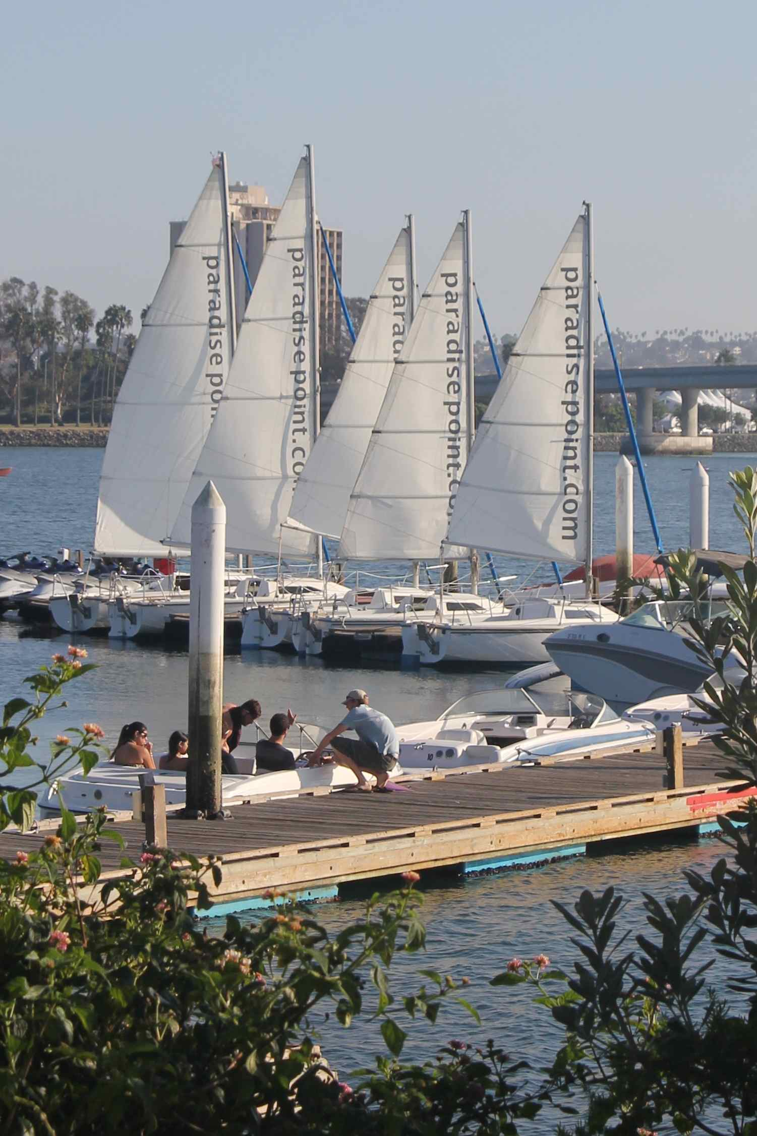 Rental sailboats, jetskis and more
