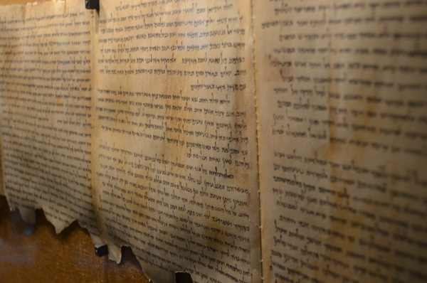 Pieces of the Dead Sea Scrolls.