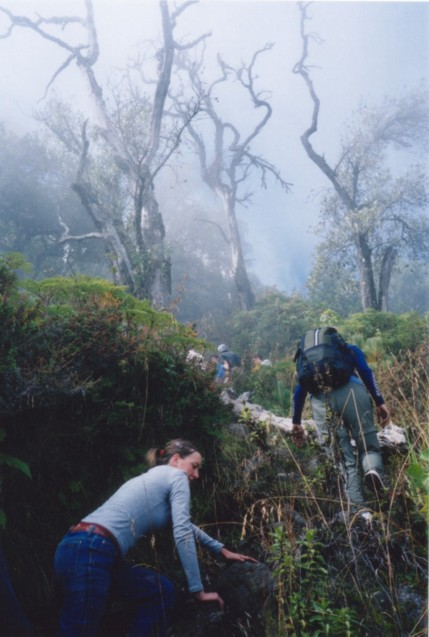 Climbing the volcano with Adrenalina Tours.