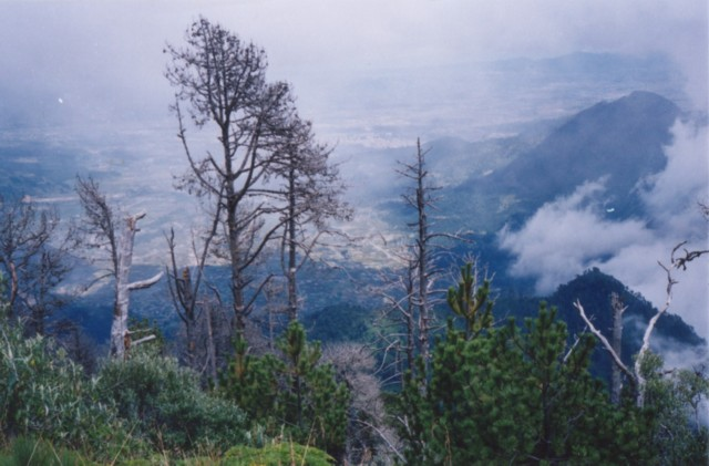 From the slope of the dormant volcano Santa Maria. you can see an active volcano, Santiaguito, which wiped the pueblo Palmar off the map in 1991.