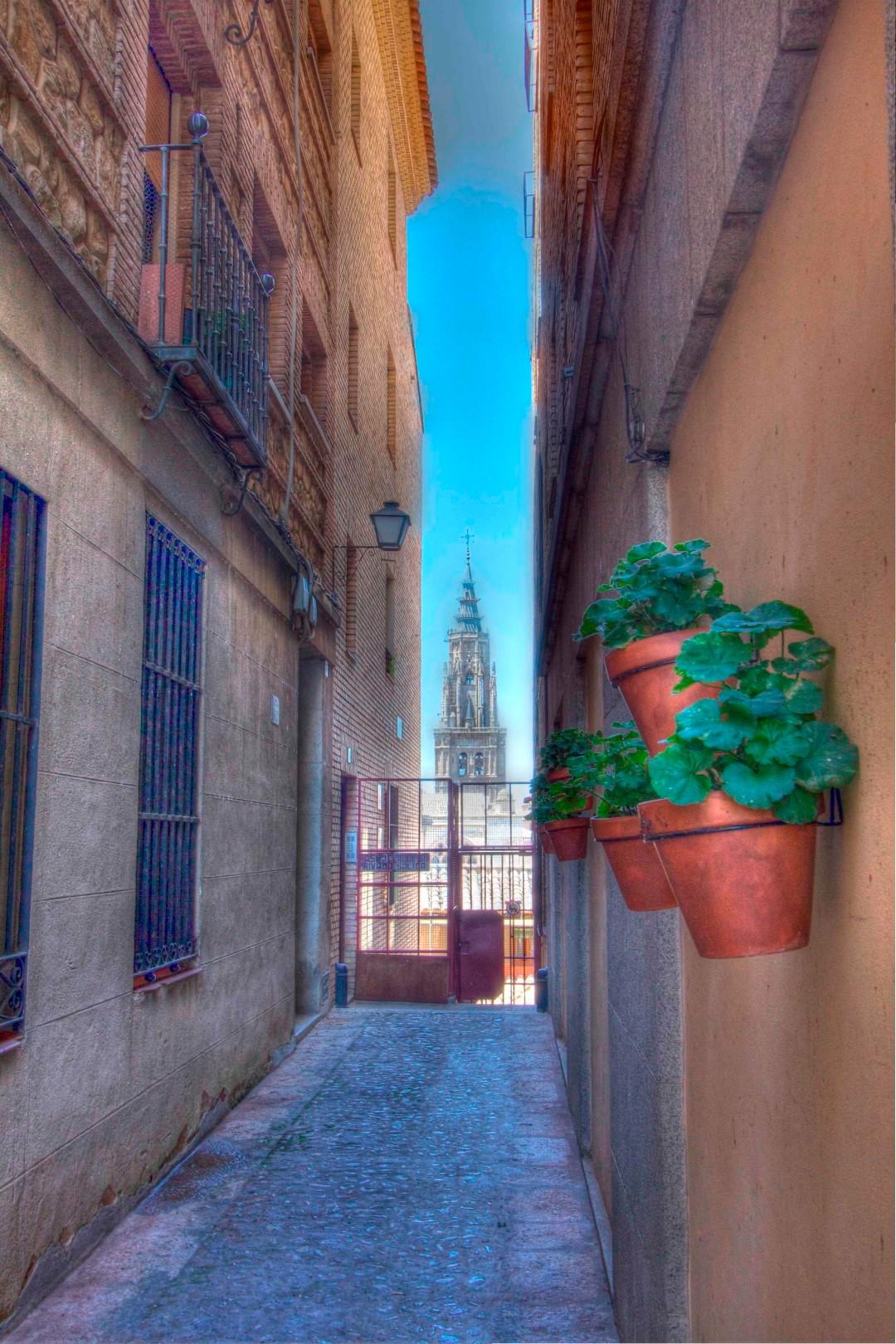 Toledo, Spain, Travelers Roundtable, Robert Bundy, Flowers